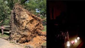 大树封路 车辆损毁 断电数日… 纽约及长岛风暴余波未尽