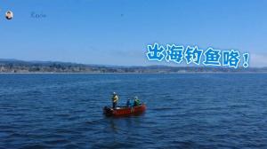 【硅谷生活】疫情下最安全的户外活动之一 出海竟钓到这么奇怪的鱼!