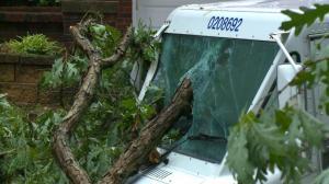 罕见德雷科风暴席卷中部 最高风速112MPH致百万户停电
