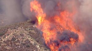 几小时狂烧1万英亩 洛杉矶山火又起