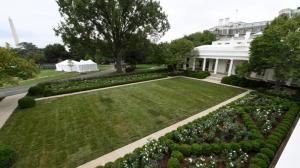 第一夫人主持翻新的白宫玫瑰园揭晓!