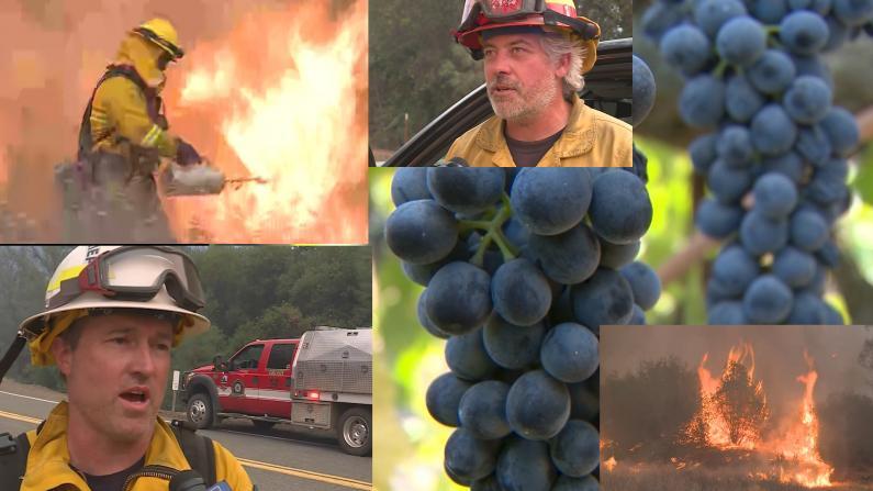 加州山火仍在肆虐 纳帕葡萄满是灰尘