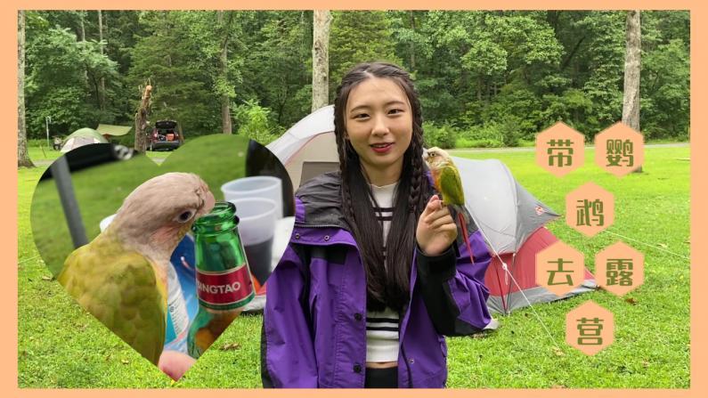 【珊珊和皮皮】一起去露营!小鹦鹉也喝啤酒吃烧烤!