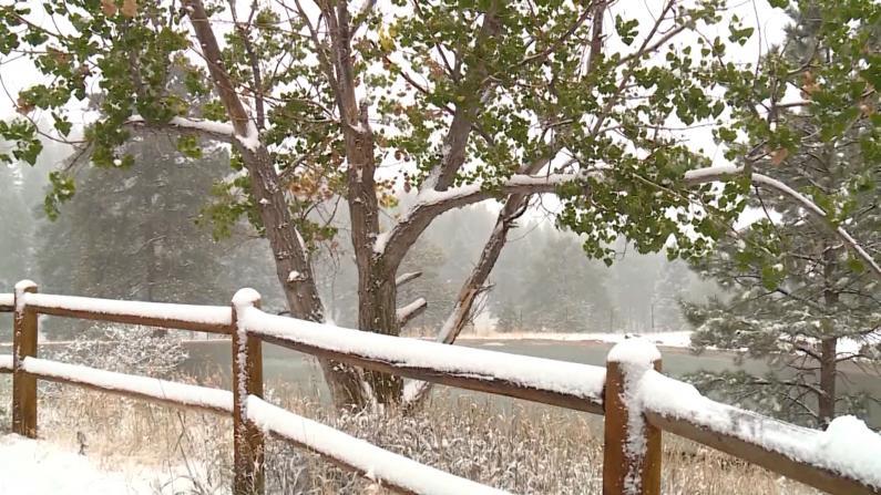 一夜入冬!丹佛大雪纷飞 气温一天从93度跌破冰点