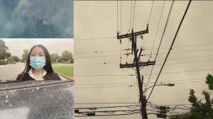 山火迫近圣盖博山麓 烟灰笼罩洛杉矶华裔聚集地