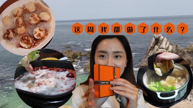 【湾区毛毛】下饭视频: 椰子鸡、腌笃鲜、Costco的A5和牛!