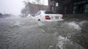 """飓风""""莎莉""""于阿拉巴马登陆:大水漫道 树木倾倒"""