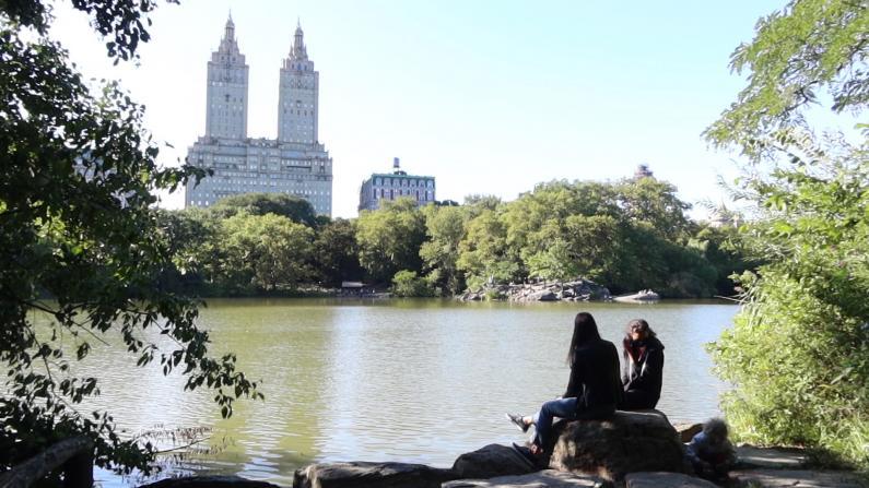 入秋后疫情下的纽约市中央公园是这样的