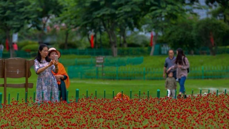 中国十一长假掀旅游热潮:福州花海变网红打卡地 庐山云景迎宾客