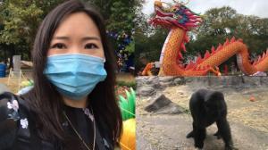 【实拍】疫情期间,波士顿最大动物园重开什么样?