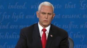 万万没想到 彭斯头上这只苍蝇成功拿下副总统辩论C位