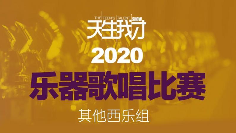 【2020天生我才乐器歌唱比赛】其他西乐组评委点评