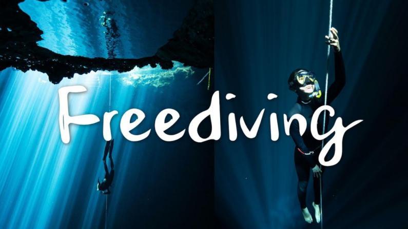 【桑妮歪歪】疫期出国记:墨西哥绝美洞潜考证全记录!带你看美丽的水下世界