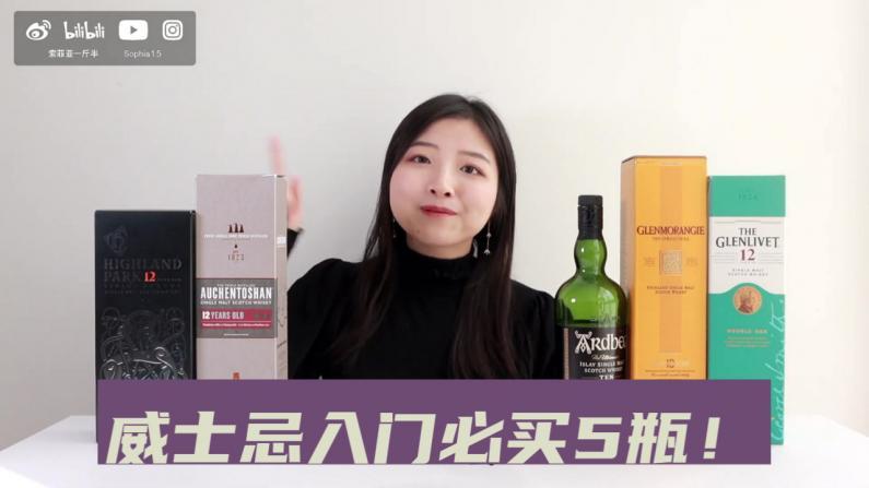 【索菲亚一斤半】威士忌入门必买5瓶!单一麦芽新手推荐+扫盲科普!