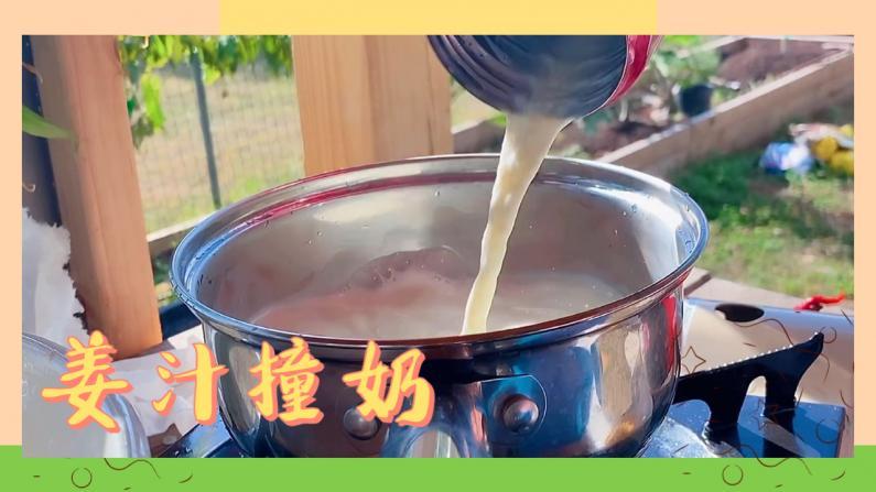 【德州田园生活】新鲜采的姜 做一碗姜汁撞奶
