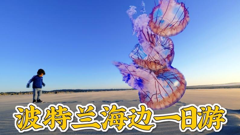 【佳萌在美国】波特兰海边一日游,逛完水族馆就吃了顿海鲜大餐!