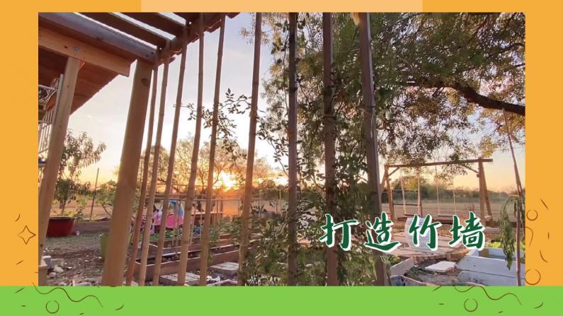 【德州田园生活】准备了竹子做竹墙 花园瞬间整洁了!