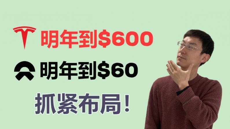 【老李玩钱】特斯拉明年到$600 NIO明年到$60 逢低买入!