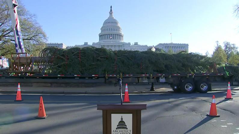 """55英尺国会圣诞树抵达华盛顿特区 命名""""民众之树"""""""