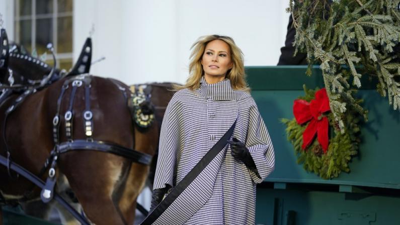 最后一次白宫过节 梅拉尼娅盛装迎接圣诞树