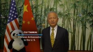 崔天凯祝贺华盛顿大熊猫宝宝命名:他让我们再次连结
