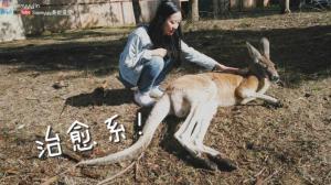 【桑妮歪歪】能撸小动物的petting zoo,治愈一整年的不开心!