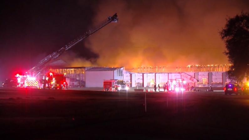 """大火将佛州养殖场烧成白地 25万只鸡变""""烤鸡"""""""