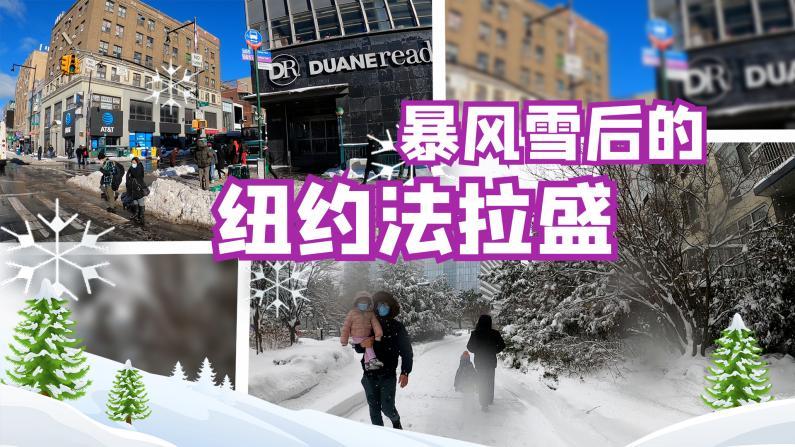 【谭天说地】新冠疫情遭遇暴风雪,华裔社区法拉盛雪后什么样?