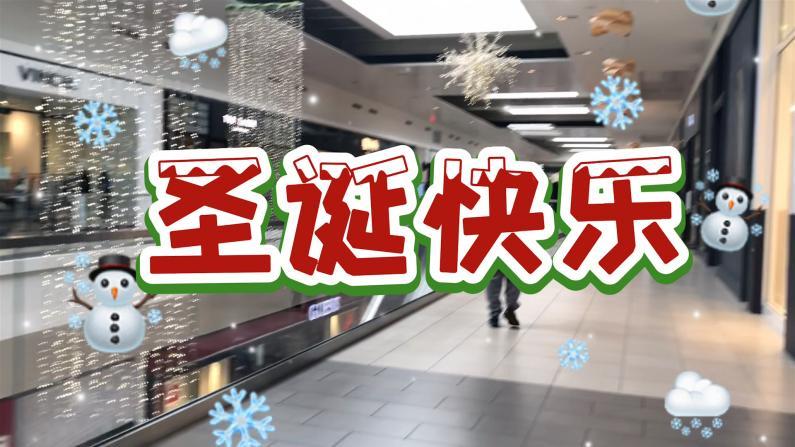 【实拍】芝加哥民众节日季购物热