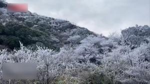 广东福建多地罕见银装素裹 民众兴奋堆雪人写祝福