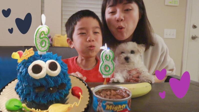 【沛莉一家】儿子6岁了!看幼儿园怎么给小朋友过生日