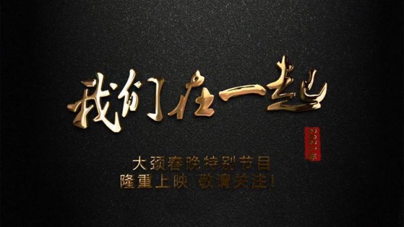 纽约长岛大颈华人春晚纪录片《我们在一起》将登陆美国中文电视台网