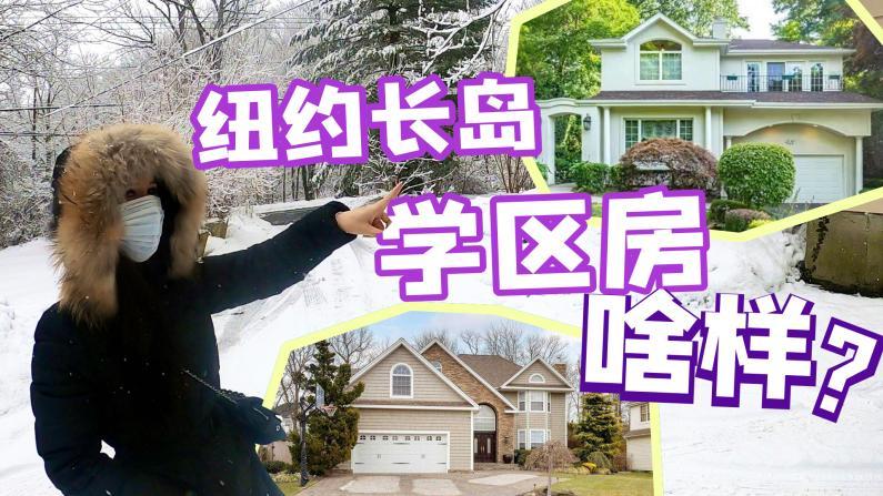 【谭天说地】暴雪中纽约长岛看房 华人最爱的大颈学区房啥样?