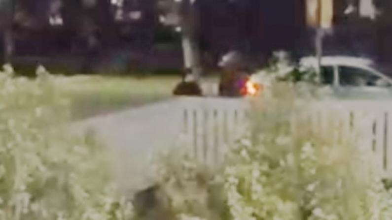 【现场】嫌犯朝遛狗人开枪瞬间! 邻居摄像头拍下LadyGaga爱犬被劫全程