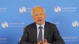 崔天凯:中国无意取代任何国家