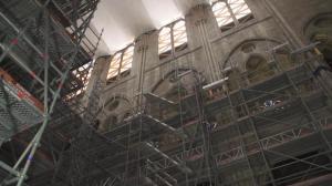 法国砍百年老橡树修复巴黎圣母院 计划2024年对外重开