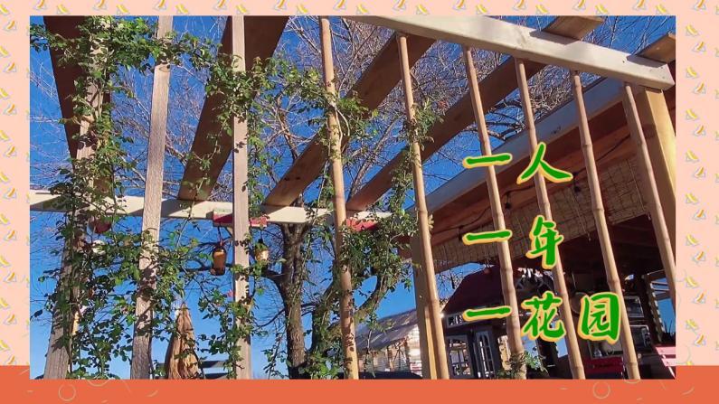 【德州田园生活】一人一年时间打造的小院子