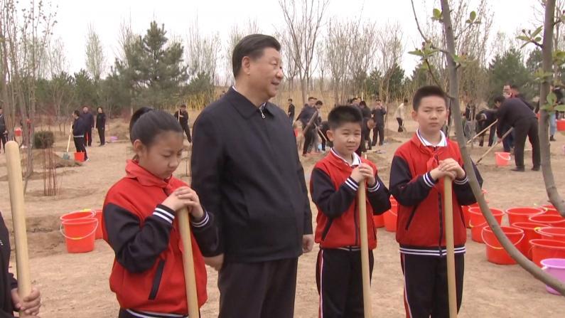 习近平:美丽中国不是涂脂抹粉 而是健康