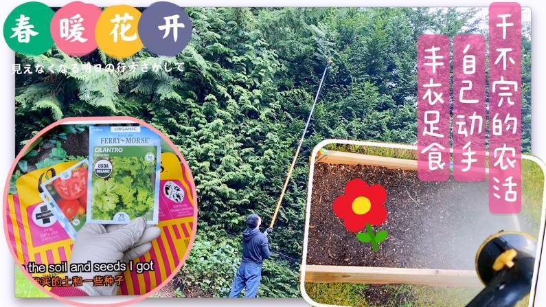 【七十五公斤级】春天到了 干不完的农活!