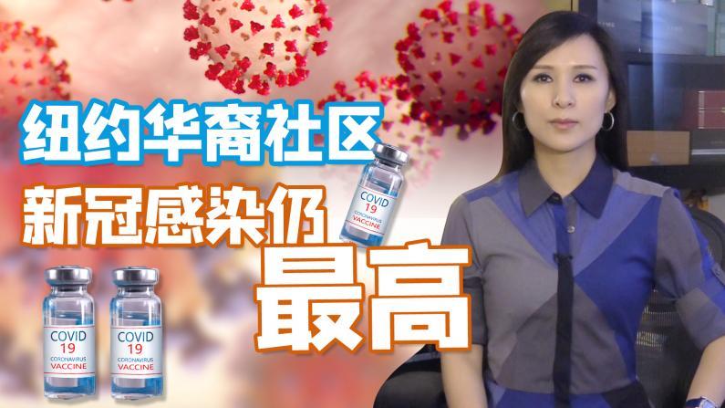 【谭天说地】纽约华裔社区接种疫苗后新冠确诊仍居高不下 法拉盛第一高!