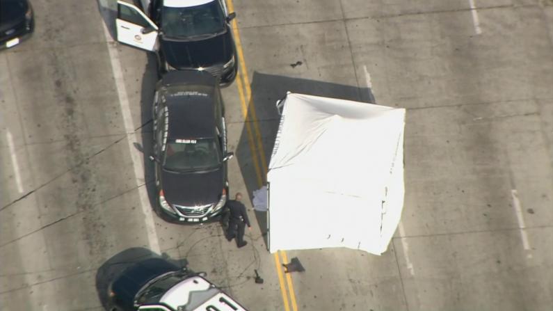 一男子穿防弹衣在好莱坞撞警车被击毙 他车上写着这些话…