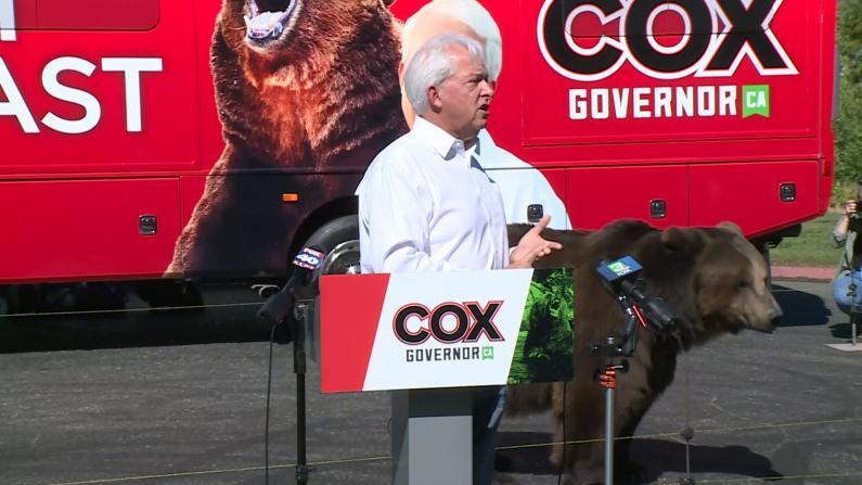 熊出没!他选加州州长 竟找它来捧场