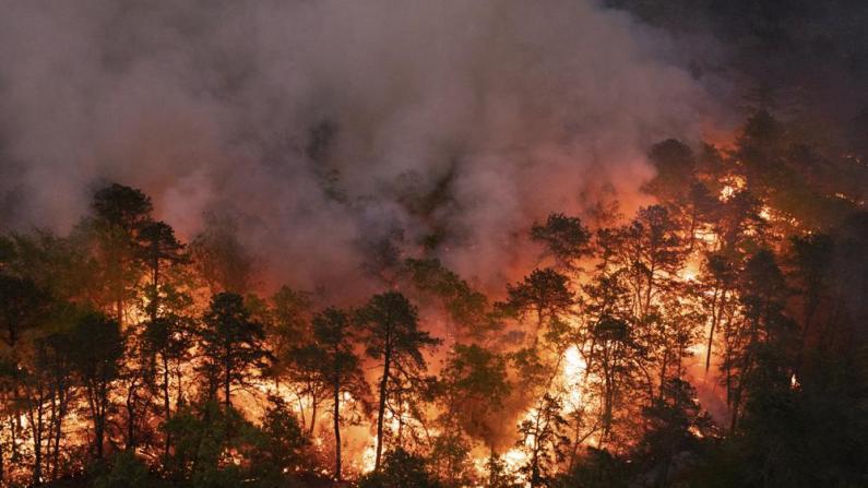 新泽西南部野火蔓延约千英亩 百余栋建筑受影响