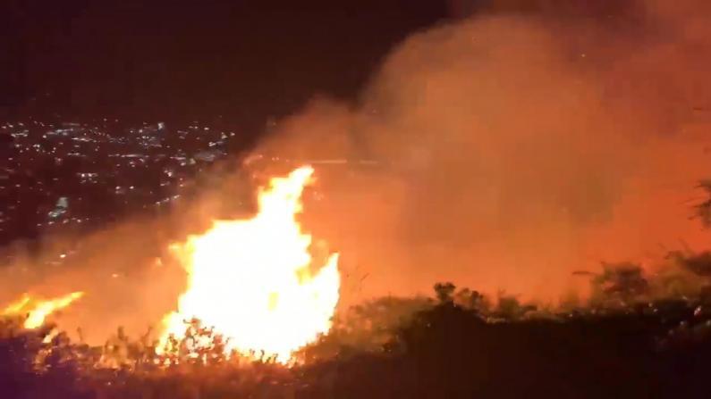 """加州洛马大火威胁多家电视台:""""火焰就在我们窗外"""""""