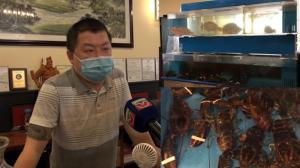 波士顿龙虾价格大涨 中餐馆老板:进价贵销量低