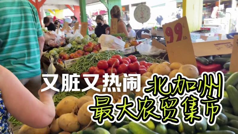 """【美天一报】""""很脏""""却很热闹 北加州最大农贸市场Denio's Market"""