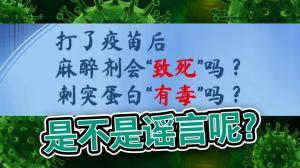 """【医痴的木头屋】打疫苗后,不能使用麻醉药?!刺突蛋白是""""毒素""""?!"""