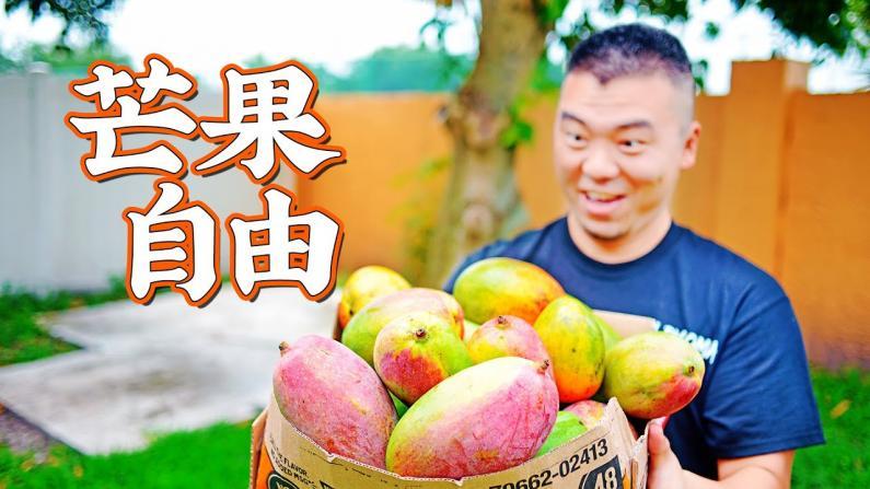 【佳萌小厨房】芒果丰收,吃起来!泰式芒果虾沙拉和杨枝甘露