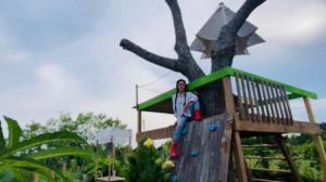 【德州田园生活】给娃娃们做一个树屋游乐园,也是我的游乐园