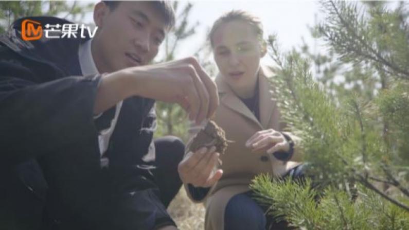 《闪耀的平凡:青春接力》治沙人石健阳:扎根大漠厚植绿色梦想